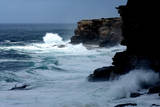 Large Waves Pound the Coast Near Bronte, East of Sydney, Australia Photographic Print by Tracey Nearmy