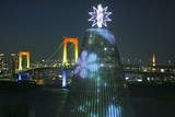 An Illuminated Bridge and Christmas Tree Photographic Print by Dai Kurokawa