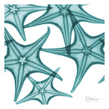 Starfishes Posters by Albert Koetsier