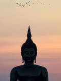 Birds Fly Past the Head of a Giant Buddha at Wat Muang Photographic Print by Barbara Walton