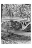 WH Bridge Prints by Marilu Windvand