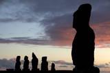 Sea Life on Easter Island Photographic Print by Ian Salas