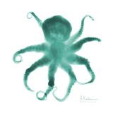 Teal Octopus Plakat af Albert Koetsier