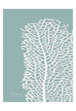 Sea Fan 4 Prints by Albert Koetsier
