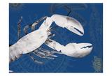 Nautical Lobster Art by Albert Koetsier