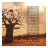 Tony Pazan - Baobab Life Tree Umění