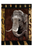 Elephant Bordered Prints by Jace Grey
