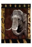 Elephant Bordered Láminas por Jace Grey