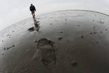 A Beachcomber Braves on a Muddy Island after Strong Wind and Rain Photographic Print by Julian Stratenschulte