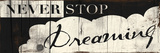 Never Stop Dreaming Poster by Jace Grey
