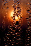 A Macro Photograph of Water Droplets Refracting the First Rays of a Clear Sunrise in Beijing Photographic Print by Michael Reynolds