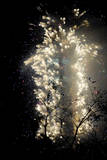 Fireworks Show Ushers in New Year Photographic Print by Eddie Cheng