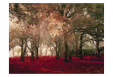 Crimson Forest Floor A2 Print by Taylor Greene