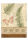 The Butterfly Fern Prints by Jace Grey