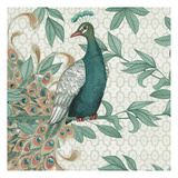 Pretty Peacocks Square VI Prints by Nicole Tamarin
