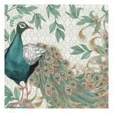 Pretty Peacocks I Print by Nicole Tamarin