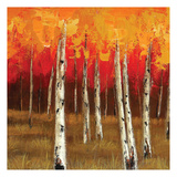 Golden Birch Trees 2 Art by  Sunny