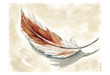 Feather 1 Prints by Anne Ormsby