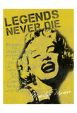 Legends Never Die Prints by Lauren Gibbons