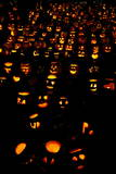 Thousands of Carved Pumpkins for Haloween Photographic Print by Cj Gunther