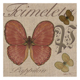 Copper Butterfly Prints by Lorraine Rossi