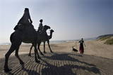 Camel Sculptures at Beachside in Onjuku City Photographic Print by Everett Kennedy