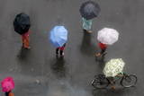 Indian Commuters under their Umbrellas to Protect Themselves from the Rain in Mumbai Photographic Print by Divyakant Solanki