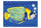 Fish on Polka Dots 1 Posters by Anne Ormsby