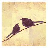 Bird Vine Square 3 Prints by Lorraine Rossi