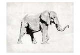 Elephant Trunk Up Posters by  OnRei