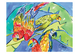 Parrots Art by Anne Ormsby