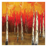 Golden Birch Trees 3 Posters by  Sunny
