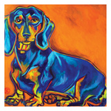 Blue Dachsund 2 Print by Ilene Richard