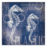 Navy Sea Horses Prints by  Ophelia & Co.