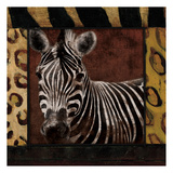 Zebra Prints by Jace Grey