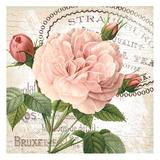 Pink Fleur 1 Print by  Ophelia & Co.