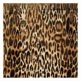 Leopard Pattern Prints by Jace Grey