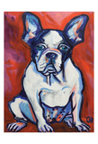 French Bull Dog 2 Posters by Ilene Richard
