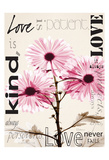 Chrysanthemum Love Poster by Albert Koetsier