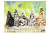 Poules Poster par Beverly Dyer