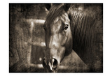 Sepia Brown Horse Print by Suzanne Foschino