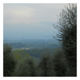 Tuscan View Prints by Jace Grey
