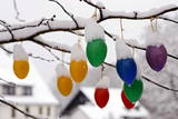 Snow-Covered Easter Eggs Hanging on a Tree Photographic Print by Daniel Karmann