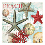 Red Beach Shells Posters by  Ophelia & Co.