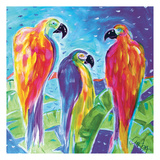 Parrot Parade Posters by Anne Ormsby