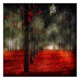 Crimson 12 Print by Tracey Telik