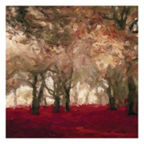 Crimson Forest Floor A Prints by Taylor Greene