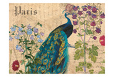 Paris Peacock Botanical 3 Poster by Elizabeth Jordan