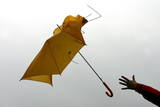 Wind Snatches Away a Woman's Umbrella Photographic Print by Patrick Peul