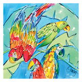 Parrots Square Prints by Anne Ormsby